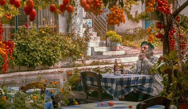 organik domates nasıl yetiştirilir